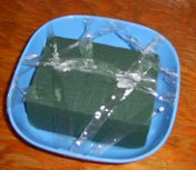 my first cut piece of oasis in a dish, taped down to keep in place